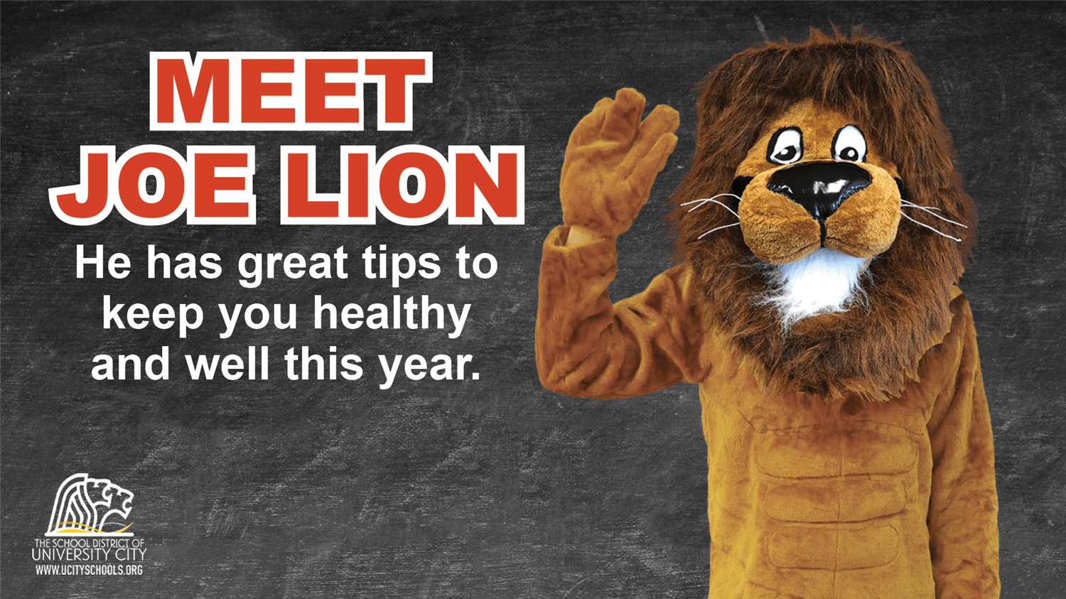 Meet Joe Lion - A Crusader for Health and Wellness