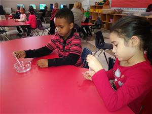 Using science tools to make observations