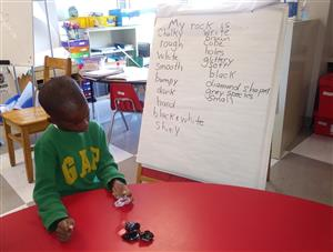 Using descriptive words to make observations